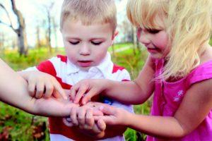 enfant-decouverte-coccinelles-insectes