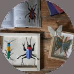 atelier-creatif-insecte-papier