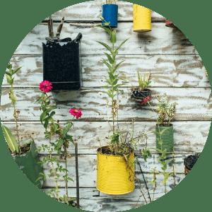 fleurs-diy-insectes-pollinisateurs-insectes