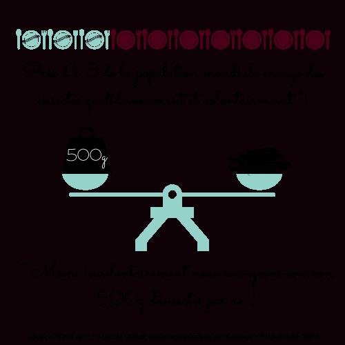atelier-degustation-insecte-vins-fourmidables-500g