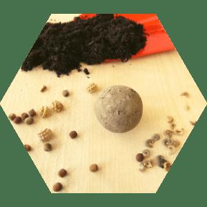 atelier-ehpad-bombes-graines-fleurs-fourmidables