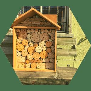 atelier-ehpad-refuges-insectes-fourmidables