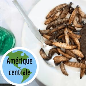 manger-insectes-comestibles-amerique-centrale-mexique