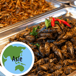 manger-insectes-comestibles-asie